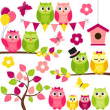 Summer Owls Stock Image