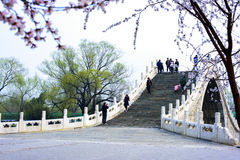 Summer Palace,Beijing,China. Visitors enjoy the beautiful spring scenery in the Summer Palace Royalty Free Stock Image