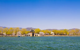 The summer palace beijing spring peach royalty free stock photography