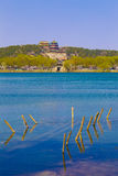 The summer palace in beijing spring peach Royalty Free Stock Photo