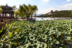 The summer palace and lake Kunming  in Beijing Royalty Free Stock Photos