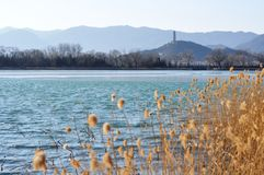 The Summer Palace. One tower and one lake make a good landscape. It was winter and some ice melt Royalty Free Stock Images