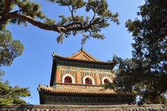 The Summer Palace with pine tree Stock Photography