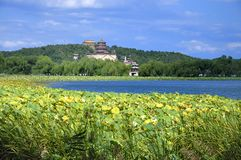 Summer Palace- Tower of Buddhist Incense(foxiangge Stock Photos