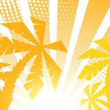 Summer palm background Royalty Free Stock Images