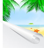 Summer palm beach Royalty Free Stock Photo