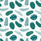 Summer palm leaves seamless pattern stock images
