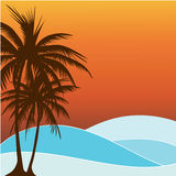 Summer Palm Tree. A summer  Beach  background with copy-space Royalty Free Stock Photo