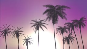 Summer palm trees in sunset scene. vector illustration. EPS 10 Royalty Free Stock Photos