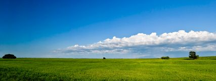 Summer panorama Royalty Free Stock Photography