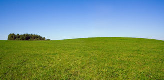 Summer panorama landscape with sky and field Royalty Free Stock Photos