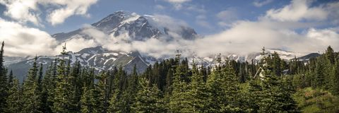 Summer Panorama of Mt Rainier from Paradise Parking Lot royalty free stock photo