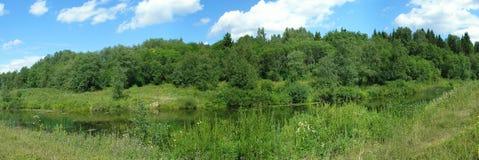 Summer panorama. River Royalty Free Stock Image