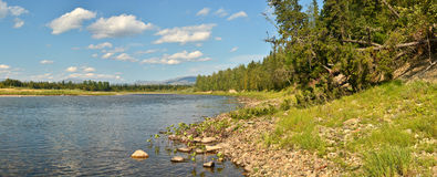 Summer panorama of the river in the Northern Urals. Stock Images