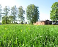 Summer panorama royalty free stock photography