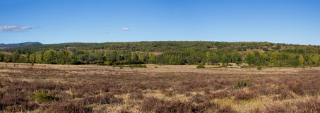Summer Panoramic Landscape Royalty Free Stock Photo