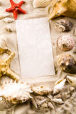 Summer paper letter with shell Royalty Free Stock Photos