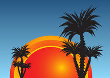 Summer paradise Royalty Free Stock Photography