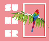 Summer paradise design of bird and palm tree Royalty Free Stock Photos