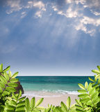 Summer paradise view. With green foliage, beautiful beach, emerald color sea and rays from heaven Stock Photography