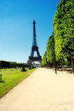 Summer in Paris. Tour Eiffel, France royalty free stock photo