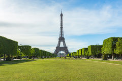 Summer in Paris and the Eiffel tower.  Stock Image