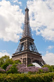 Summer in Paris Royalty Free Stock Photography