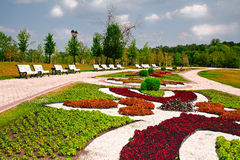Summer park. Colorful summer park with banches Royalty Free Stock Image