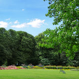Summer park. Park with lawns and flower gardens stock images