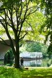 Summer park Royalty Free Stock Photos