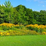 Summer park with beautiful flower beds. Stock Photography