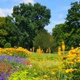 Summer park with beautiful flower beds. Royalty Free Stock Images