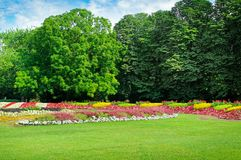 Summer park with beautiful flower beds. Royalty Free Stock Photo