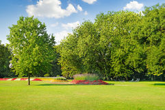 Summer park  and beautiful flowerbeds Stock Photography