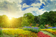 Summer park with beautiful flowerbeds. And sun stock photography