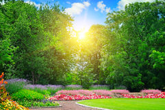 Summer park with flowerbeds. Summer park with beautiful flowerbeds stock photo