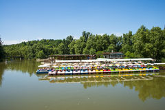 Summer park, lake, cruise Royalty Free Stock Images