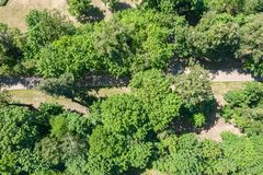 Summer park landscape with footpath among green trees. aerial view royalty free stock image