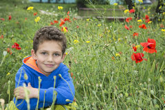 In summer, the park is a little boy in a flower bed. Royalty Free Stock Photography