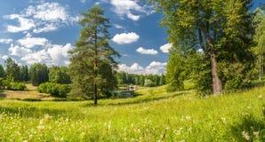 Summer park panorama Stock Photo