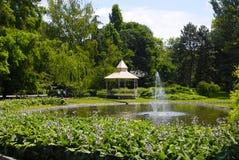 Summer park scene Stock Photo