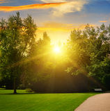 Summer park and sunset Royalty Free Stock Photography