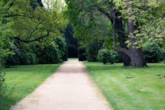 Summer park walkway Royalty Free Stock Image