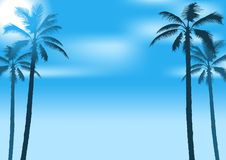 Summer Party Background. Illustration with Palms and Blue Sky - Vector Royalty Free Stock Image