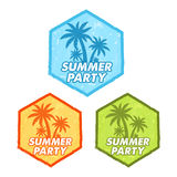 Summer party with palms sign, grunge flat design hexagons labels Stock Image