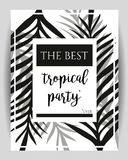 Summer party poster with palm leaf and lettering.  Stock Image