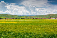 Summer pastoral scenery. A group of rural landscapes in Gansu Province, china Stock Photo