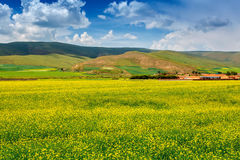 Summer pastoral scenery. A group of rural landscapes in Gansu Province, china Stock Photography
