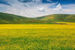 Summer pastoral scenery. A group of rural landscapes in Gansu Province, china Royalty Free Stock Photography