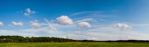 Summer in pasturage. Summer in the hayfield and blue sky with clouds royalty free stock photo